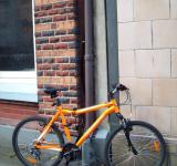 Free Photo - Diamond back Downhill bike