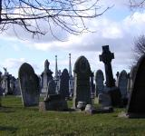 Free Photo - Headstones