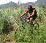 Free Photo - Mountain biker