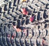 Free Photo - Tire imprint  texture
