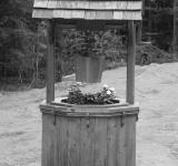 Free Photo - Decorative Water Well