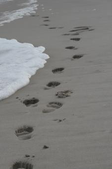 Footprints In The Sand - Free Stock Photo