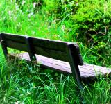 Old wooden bench - Free Stock Photo
