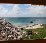 Free Photo - Bonaire