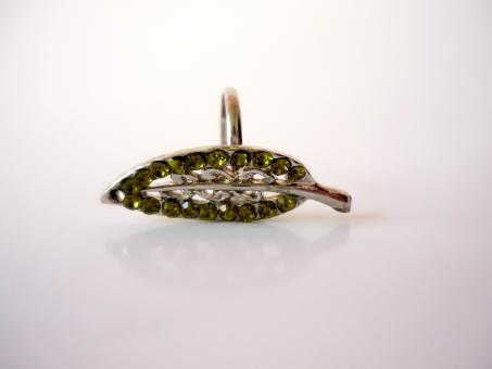 Green Leaf Ring - Free Stock Photo
