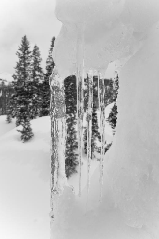 Free Stock Photo of Icicles Created by James Stewart