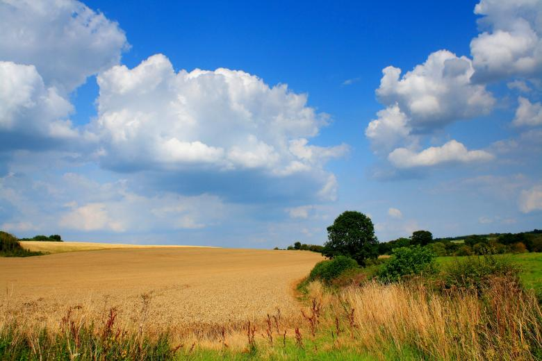 Free Stock Photo of Rural scene Created by paul clifton