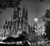 Free Photo - Black and white cathedral