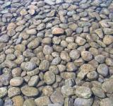 Free Photo - Round pebble stones