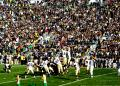 Free Photo - ND Football Game