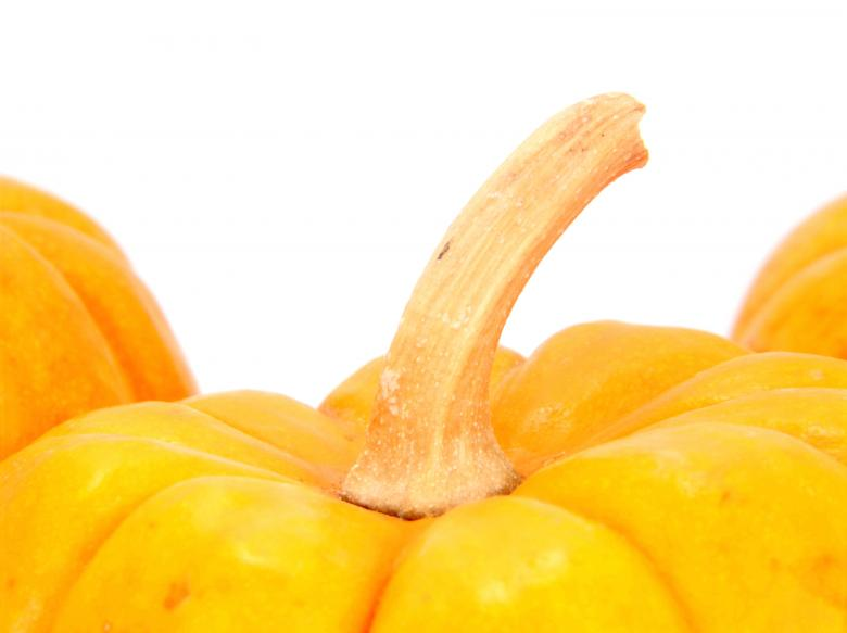 Free Stock Photo of Pumpkin Created by homero chapa