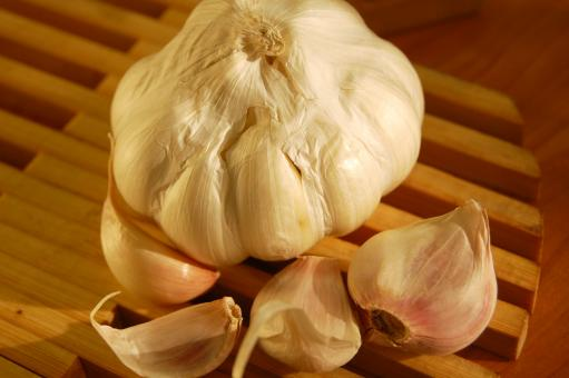 Garlic - Free Stock Photo