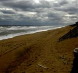 Free Photo - Gloomy beach