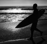 Free Photo - Surf Time