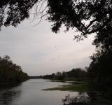 Free Photo - River Bend