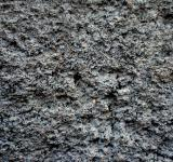 Free Photo - Concrete texture