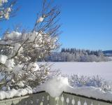 Free Photo - Winter