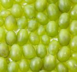 Free Photo - Green grapes