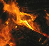 Free Photo - Camping Wood Fire