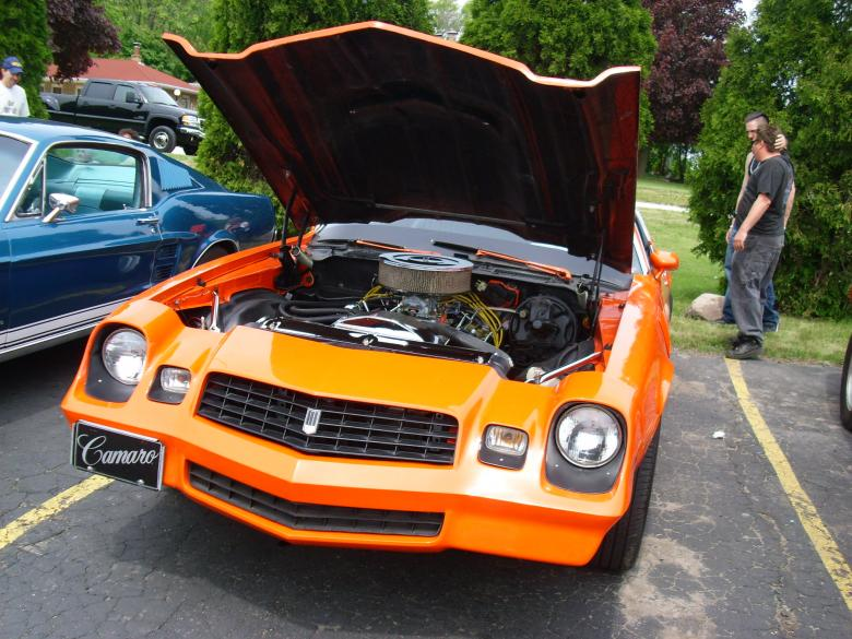 Free Stock Photo of Orange Maro Created by Amanda K Burczyk