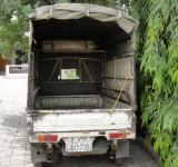Free Photo - Suzuki pickup
