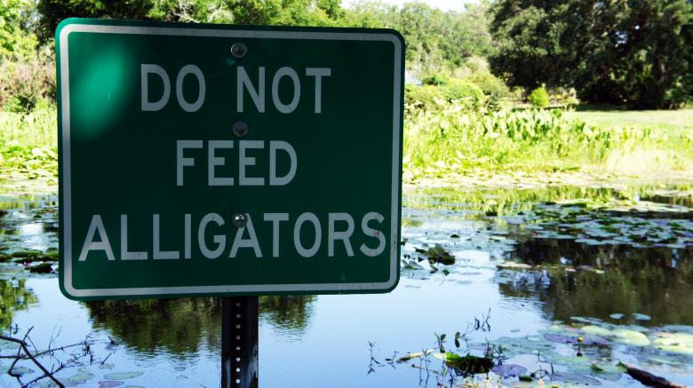 Free Stock Photo of Do Not Feed the Alligators Created by Thom Parkin