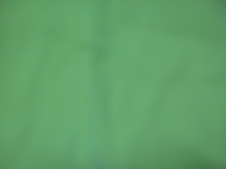 Free Stock Photo of Green Background Created by Ali Haider