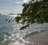 Free Photo - Martinique island