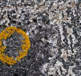 Free Photo - Yellow Circle on Concrete