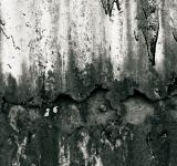 Free Photo - Black and white rust