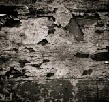 Free Photo - Grunge Cracked Paint