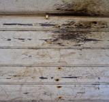 Free Photo - Scratched Wooden Wall