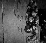 Free Photo - Dark Stained Wall