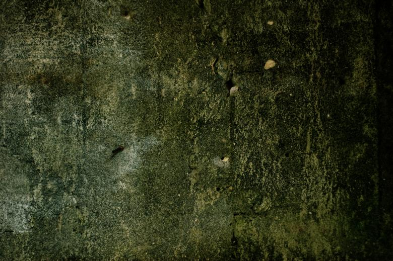 Free Stock Photo of Green Concrete Texture Created by Bjorgvin