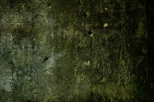 Green Concrete Texture - Free Stock Photo
