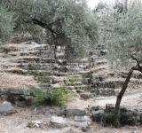 Free Photo - Ancient amphitheater in Herakleia