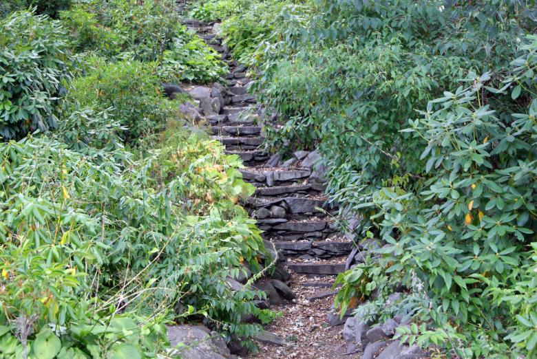 Free Stock Photo of Nature's Stairway Created by Brian Norcross