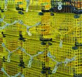 Free Photo - Yellow Lobster Traps
