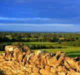 Free Photo - Cotswold countryside