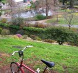 Free Photo - Red Raleigh 20 rests