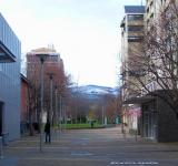 Free Photo - University of Otago - Winter  2010