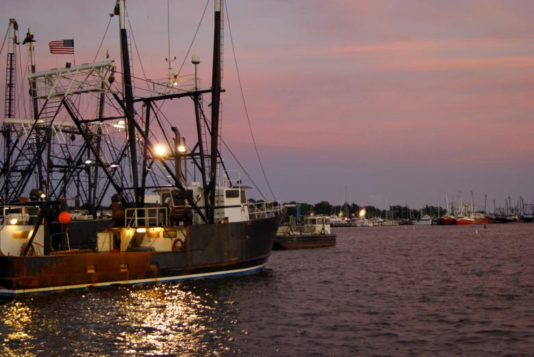 Free Stock Photo of Fishing Fleet Created by Brian Norcross