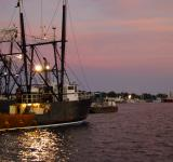 Free Photo - Fishing Fleet