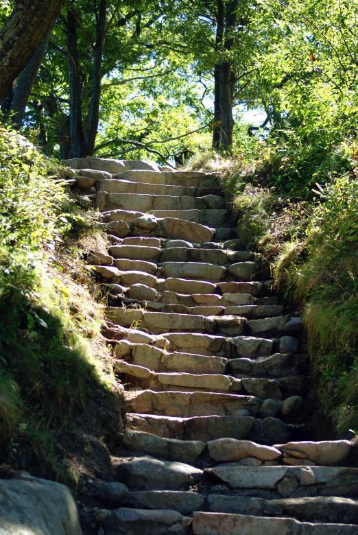 Free Stock Photo of Natures Stairway Created by Brian Norcross