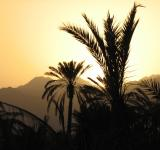 Free Photo - Sunset in Fujairah