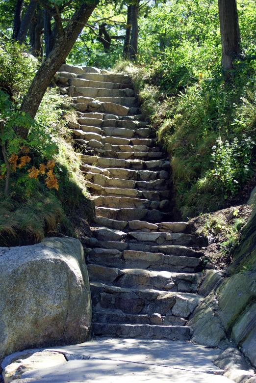 Free Stock Photo of Nature's Stairway II Created by Brian Norcross