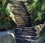 Free Photo - Nature's Stairway II