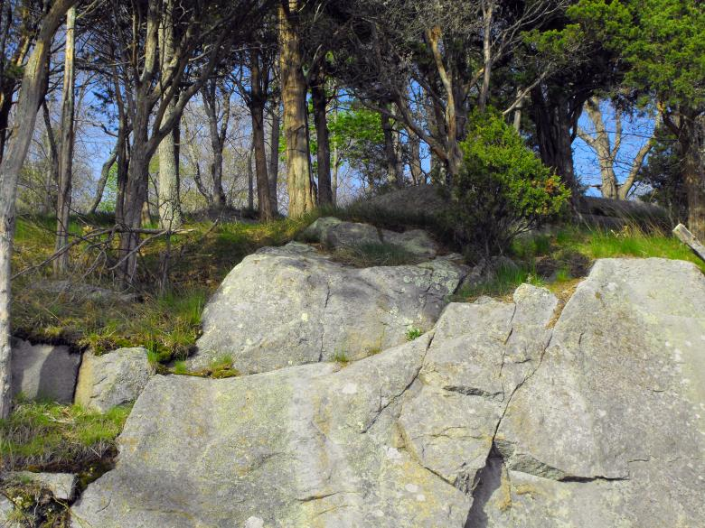 Free Stock Photo of Rocky Edge Created by Brian Norcross