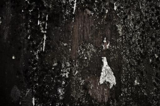 Grunge Wood Texture - Free Stock Photo
