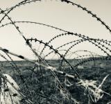 Free Photo - Barbed Wire